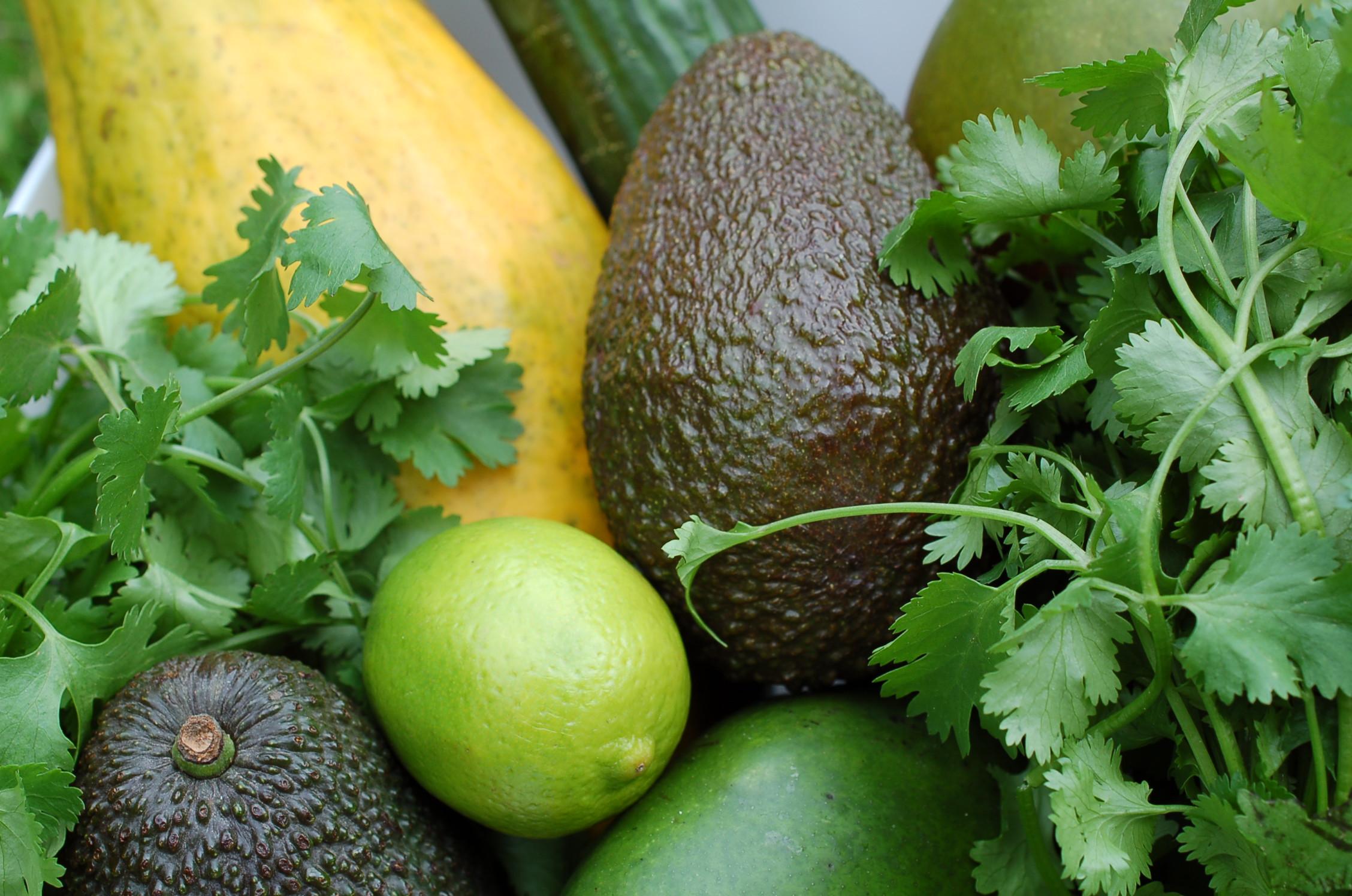avocado obst salsa salat. Black Bedroom Furniture Sets. Home Design Ideas