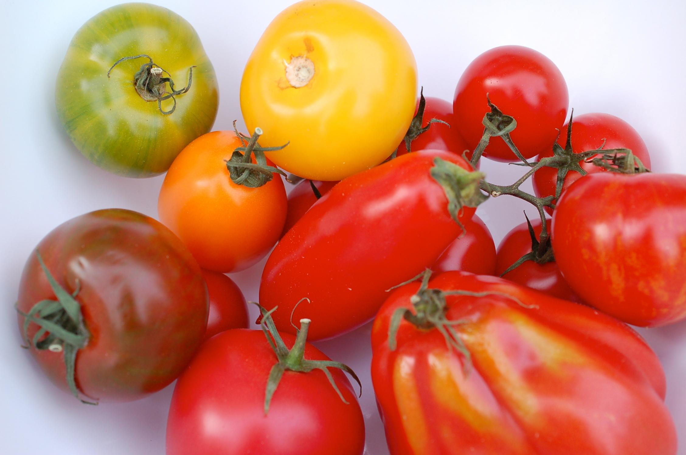 tomatensugo sauce aus frischen tomaten selber machen. Black Bedroom Furniture Sets. Home Design Ideas