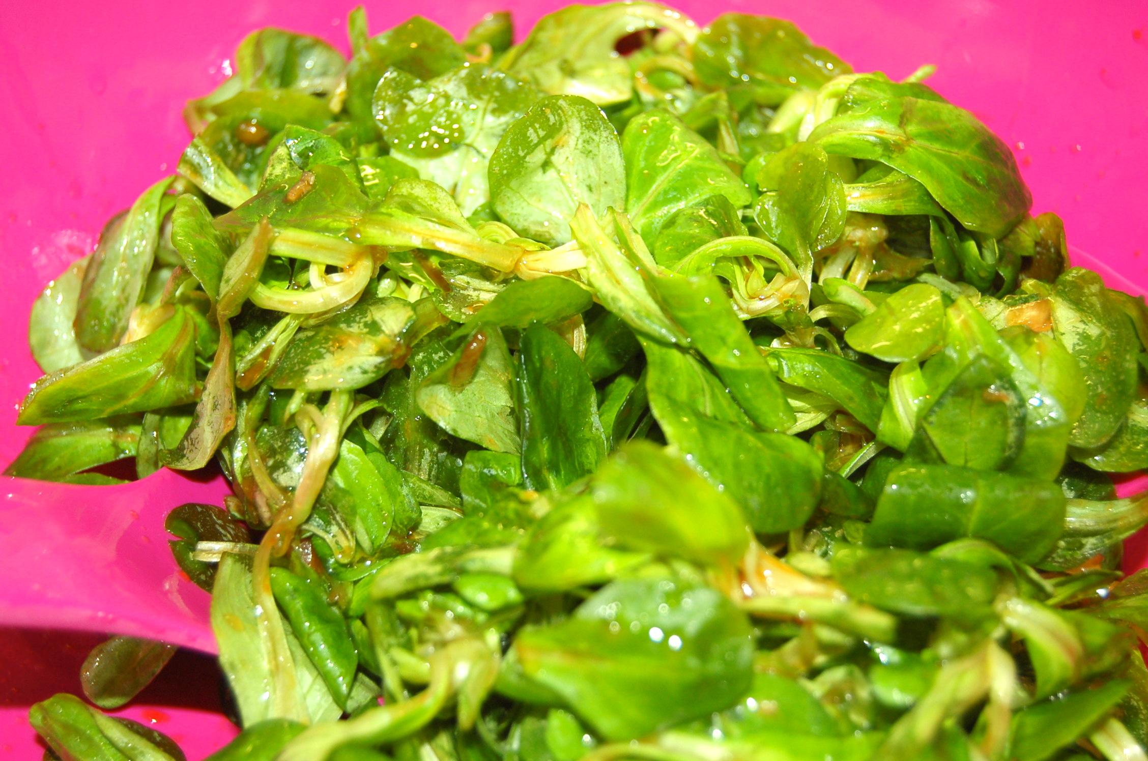 Salat Wagamama
