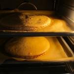 Haselnuss-Baisser-Torte