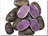 Kartoffel Müller Congo (Blauer Schwede) 2,5kg