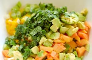 Avocado-Obst-Salsa-Salat