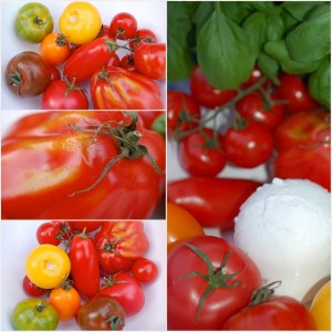 Tomaten PicFrame