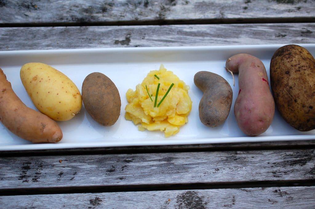 Kartoffeln, Kartoffelsalat schwäbisch